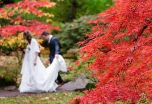 紅葉が似合う婚活